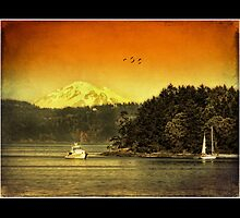 Mount Baker and islands by Nick  Kenrick Photography