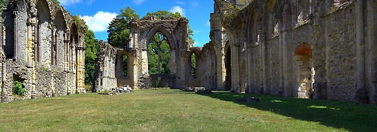 Netley Abbey by Peter D