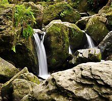 Torc waterfall. by Finbarr Reilly