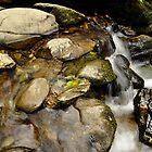 still water flows. by Finbarr Reilly