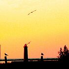 Muskegon, MI Lighthouse - Yellow-Orange Hues by Deb  Badt-Covell