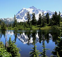 Mt. Shuksan and Reflection by Kelley Shannon