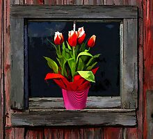 Tulips by Dennis Granzow
