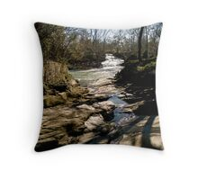 Aqueduct Park, Augusta Georgia Throw Pillow