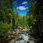Just another sunny day in Colorado by ThePhotoMaestro