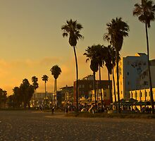 Dusk on Venice Beach, California by Barb White