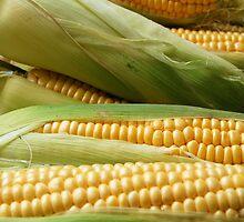 Corn by Mers Duran