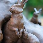 Rabbits in the Garden by busidophoto