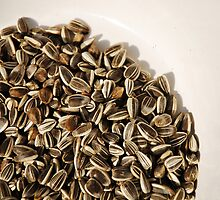 Sunflower Seeds in White Bowl  by jojobob