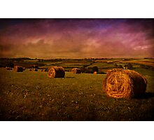 More Hay Photographic Print