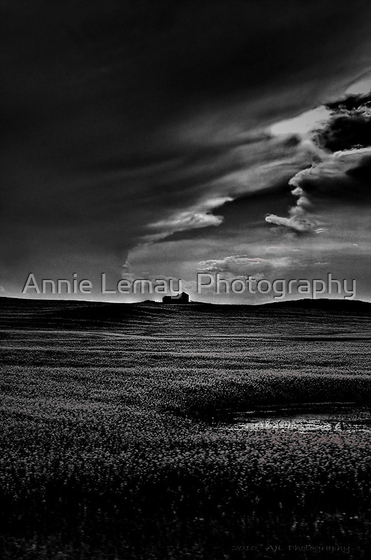 Stormy Daze by Annie Lemay  Photography