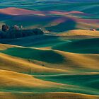 Palouse Hills by RavenFalls