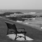 Romantic bench near the ocean by Vitaliy Gonikman
