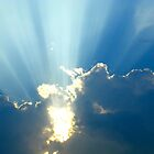 Rays by Caren