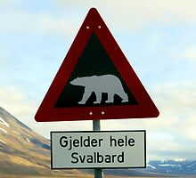 Beware of Polar Bears by John Dalkin
