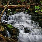 Soco Falls by Christine Annas