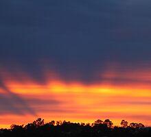 Firey Sunrise over Jones Hill by Jenelle  Irvine