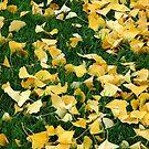 A Drop Of Gold by Lorraine Deroon