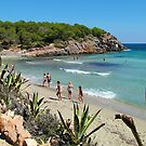 Cala Nova Beach by Tom Gomez