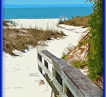 Walkway Out To The Beach by George  Link