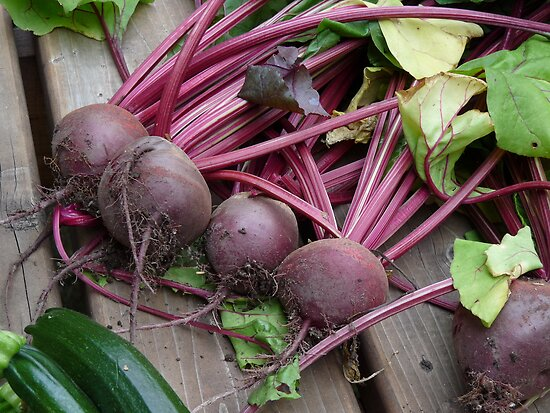 Beets from the garden by Maria Elena  Black
