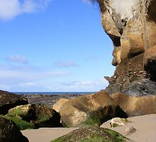 Sand stone, rock erosion. by Esther's Art and Photography