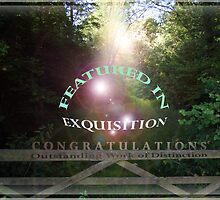 Exquisition Feature Banner by Simon Groves