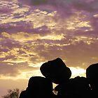 Purple sunset at Tibaroo August 2009 by John Julian