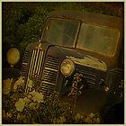 Old truck at Bellarine Estate by Deb Gibbons