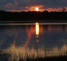 Sunset on the Marsh by jenseye