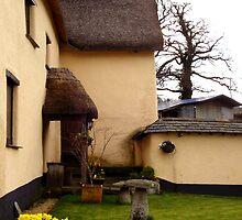 Cottage back garden by Shiva77