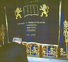 Paying One's Respects, Great Synagogue, Budapest by Priscilla Turner