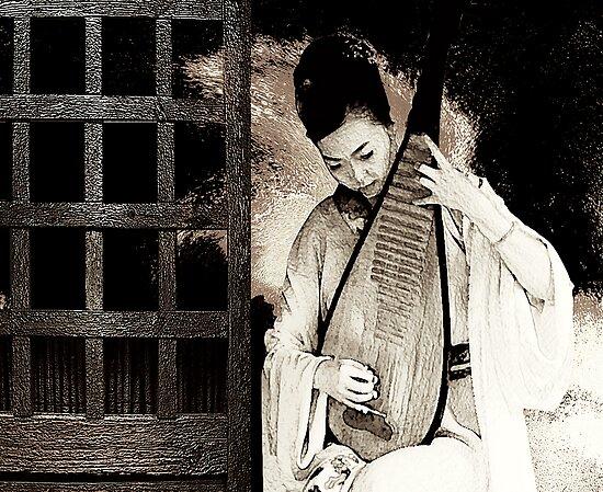 the player....... visual music by banrai