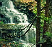 Upper section of Ganoga Falls by Aaron Campbell