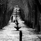 Gloomy Sunday at the Park by Mariano57
