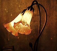 ~ Lily of the Lamp ~ by Lynda Heins