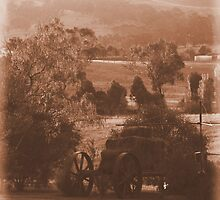 Down On The Farm - Mansfield, Victoria by BreeDanielle