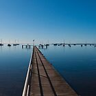 Waterfront Panoramic by Brenton Ford