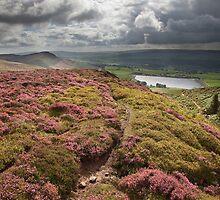 Embsay Crag & Reservoir From Embsay Moor by SteveMG
