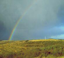 Somewhere, yet not over the rainbow by Mojca Savicki