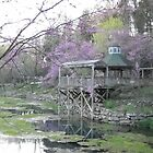 blue springs arkansas 3 by debkauble