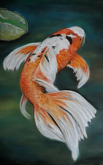 Ella the butterfly koi by charlotte yealey redbubble for Koi fish tail