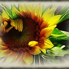 Sunflower With Rays by starlite811