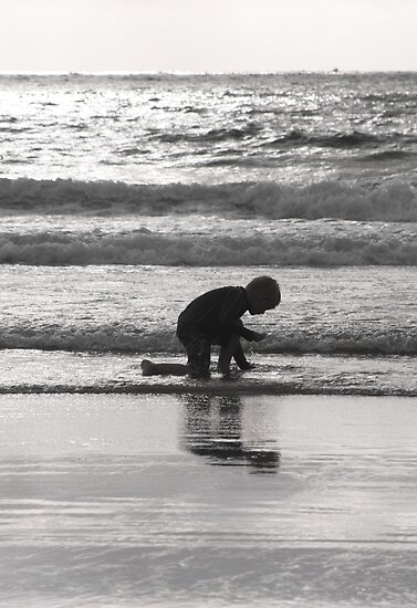 End of Day Seashell Hunt by heatherfriedman