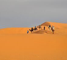 Camel Trek Over Dunes by emjaynie