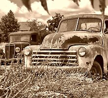 trucks in a field by WildBillPho