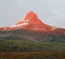 Barn Bluff at sunrise, Tasmania by tasadam