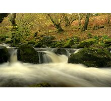 The Beck Above Aira Force Photographic Print