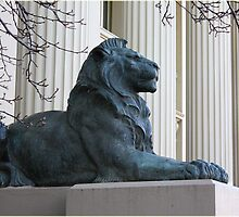Lions guarding Geelong Town Hall by Deb Gibbons