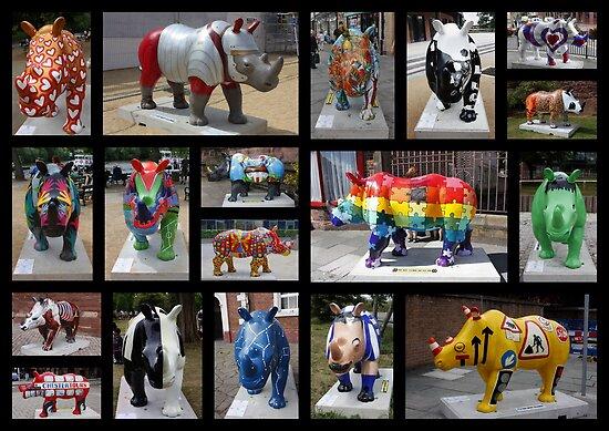 Rhino Mania in Chester by AnnDixon